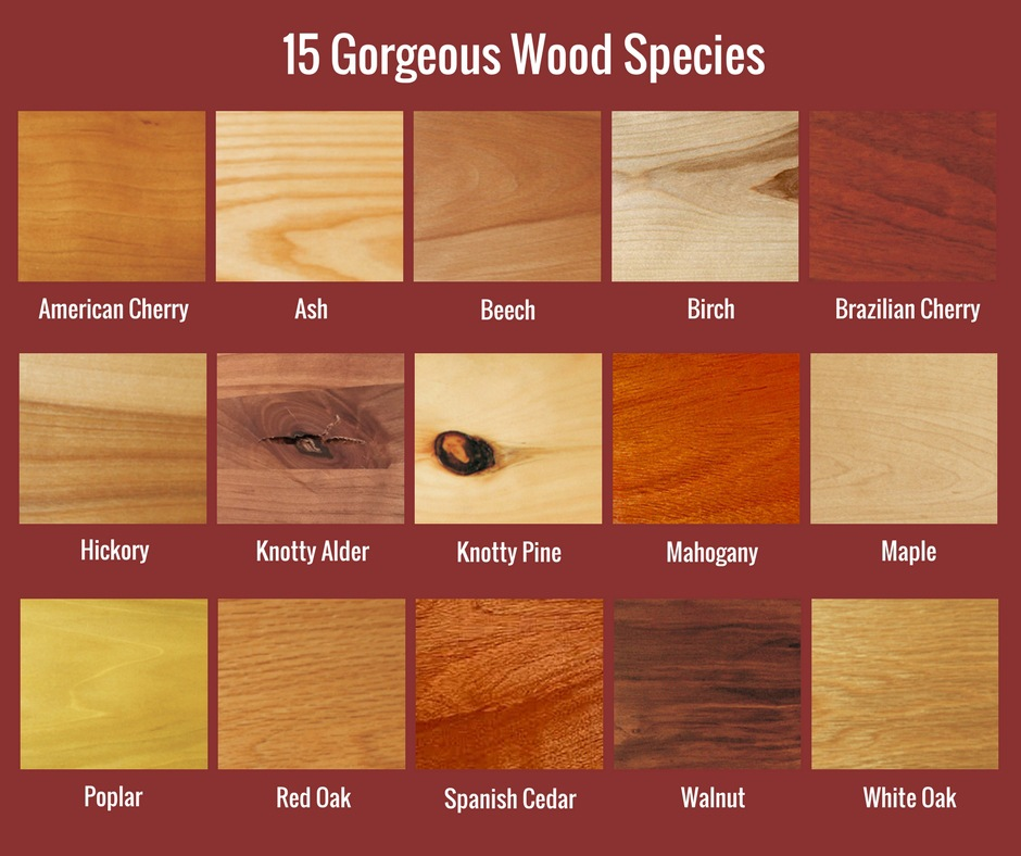 Countertop Wood Species