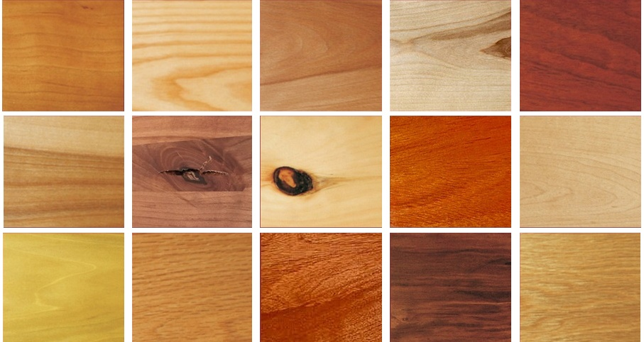 Countertops   In 15 Species Of Wood